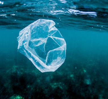 Plastic Crisis